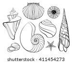 hand drawn stylized sea shells...