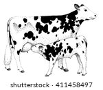 cow and calf illustration old... | Shutterstock . vector #411458497