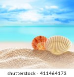two seashells  on the sandy... | Shutterstock . vector #411464173