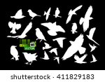 Set Of Silhouettes Of Birds....