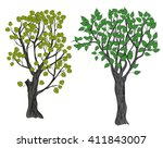 two hand drawn trees with... | Shutterstock .eps vector #411843007