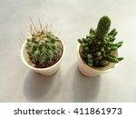 small cactus | Shutterstock . vector #411861973