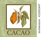 cacao design. vintage... | Shutterstock .eps vector #412031647
