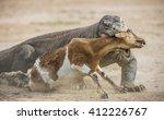 The Komodo Dragon  Varanus...