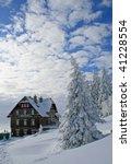 winterfeeling | Shutterstock . vector #41228554