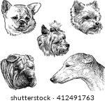 sketches of the dogs heads | Shutterstock .eps vector #412491763
