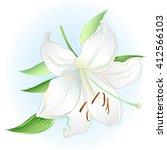 white lily on light blue... | Shutterstock .eps vector #412566103