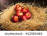 Basket With Apples Lying In Th...
