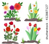 set of garden flowers growing... | Shutterstock .eps vector #412887127