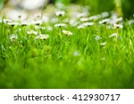 daisies on a background of... | Shutterstock . vector #412930717