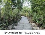 photo of green fertile mangrove ... | Shutterstock . vector #413137783