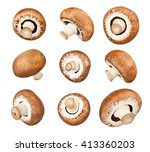 mushrooms isolated | Shutterstock . vector #413360203