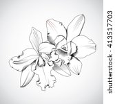 hand drawn orchids flowers....   Shutterstock .eps vector #413517703