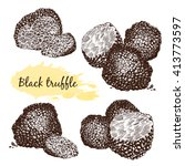 black truffles group and slices ... | Shutterstock .eps vector #413773597