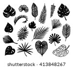 hand drawn tropical leaves... | Shutterstock .eps vector #413848267