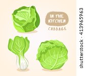 cabbage and lettuce   vegetable ... | Shutterstock .eps vector #413965963