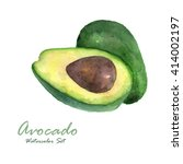 avocado isolated on white... | Shutterstock . vector #414002197