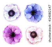 set of watercolor anemones.... | Shutterstock . vector #414082147