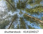 view looking straight up... | Shutterstock . vector #414104017