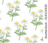 illustration of chamomile.... | Shutterstock .eps vector #414114433