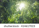 greenery canopy view of... | Shutterstock . vector #414617023