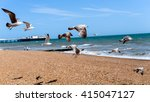 A Group Of Seagull Flying At...