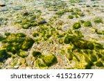 Beach  Stones Under Water