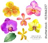 botanical illustration with... | Shutterstock . vector #415466257