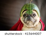 pug wearing a watermelon helmet ... | Shutterstock . vector #415644007