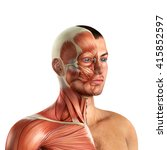 male face muscles anatomy 3d... | Shutterstock . vector #415852597