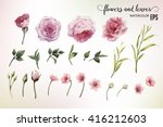 flowers and leaves  watercolor  ... | Shutterstock .eps vector #416212603