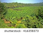 plantation agriculture. forests ... | Shutterstock . vector #416358373