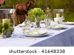 Nice outdoor table setting on the backyard on a summer day - stock photo