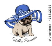 pug puppy in a blue summer sun... | Shutterstock .eps vector #416512393