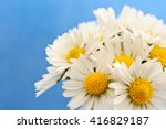 daisies on a blue background ... | Shutterstock . vector #416829187