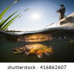fisherman and pike  underwater... | Shutterstock . vector #416862607