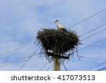 Big Wild Stork Stands In His...
