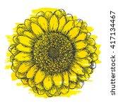 hand drawn chrysanthemum flower ... | Shutterstock .eps vector #417134467