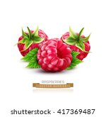 three vector berry raspberry... | Shutterstock .eps vector #417369487