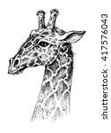 giraffe head | Shutterstock .eps vector #417576043