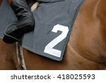 Horse Racing  Horse With Numbe...