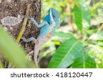 colorful chameleon on tree... | Shutterstock . vector #418120447
