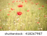 bright red poppies growing wild ... | Shutterstock . vector #418267987