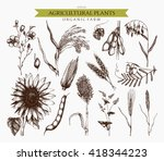 vector collection of ink hand... | Shutterstock .eps vector #418344223