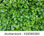 background made of shiny green... | Shutterstock . vector #418580383