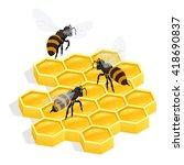 Organic Raw Honey  Honey Comb ...