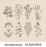 vector hand drawn collection of ... | Shutterstock .eps vector #419092093
