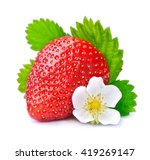 Single Strawberry With White...