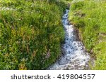 Small Mountain Stream  Italy