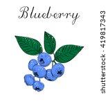 blueberries sketch vector... | Shutterstock . vector #419817343